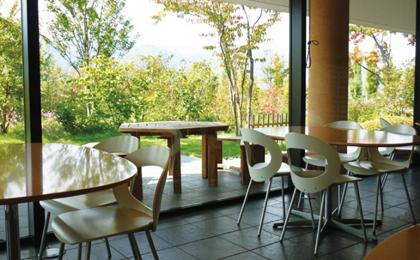 緑の見えるステキなカフェの写真